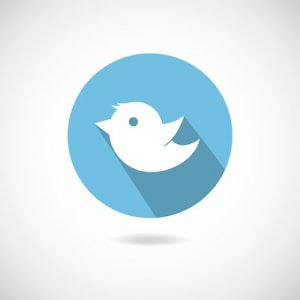 SME's guide to Twitter