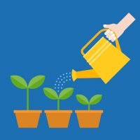Personal branding growth