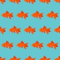 Create content goldfish